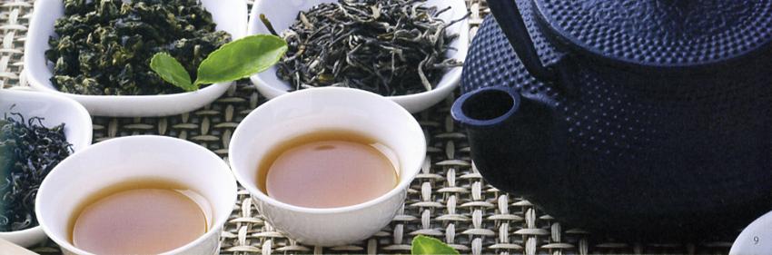 Tè Verde Natura Cylon Biologico