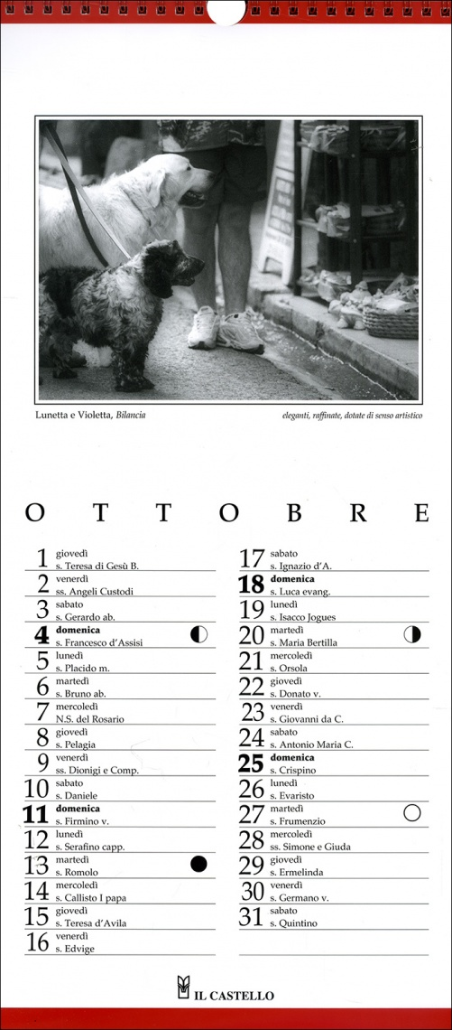Dogs Not Allowed - Calendario 2015