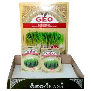Geograss Kit per Erba di Grano
