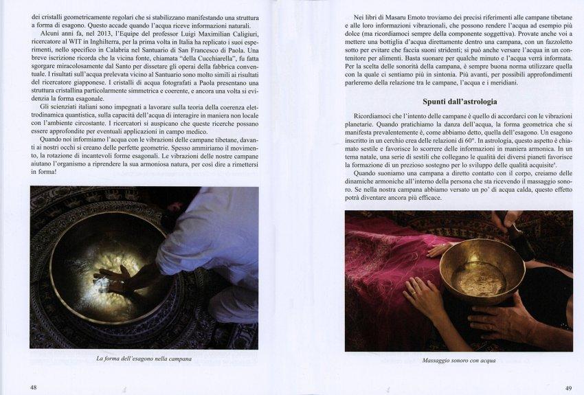 La Danza dell'Acqua e le Campane Tibetane - Interno