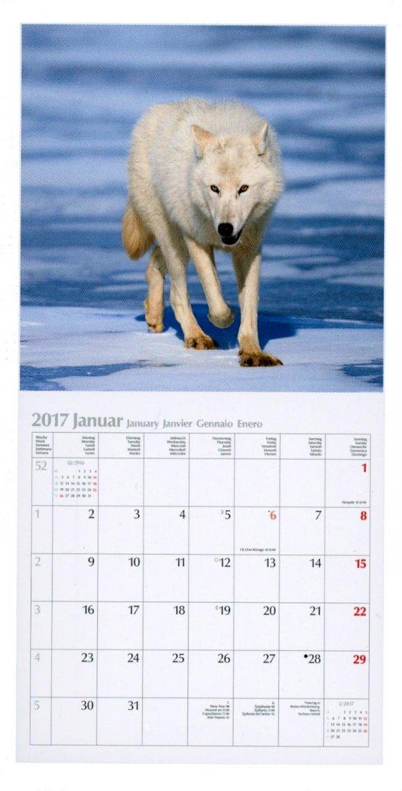 Calendario Wölfe Lupi 2017