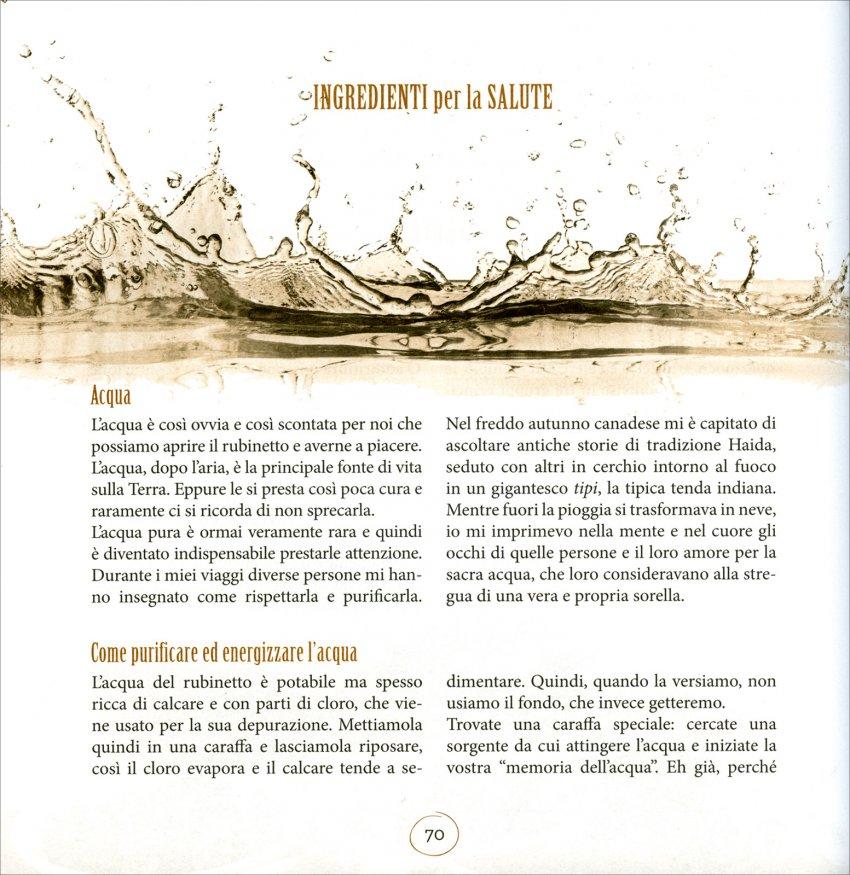Manuale Sagrado del Fai da Te - Pagina Interna