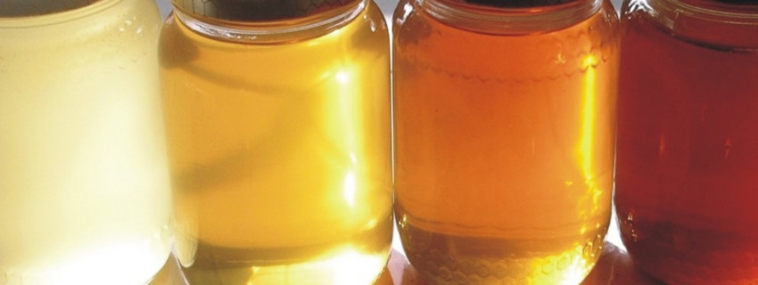 Miele d'Acacia - 1 kg