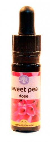 Sweet Pea Dose - Californiano