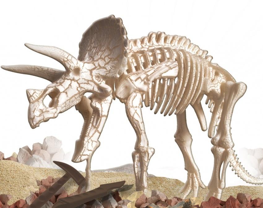 Il Triceratops
