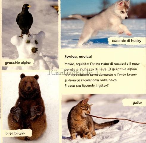 Amici Animali sulla Neve - Interno