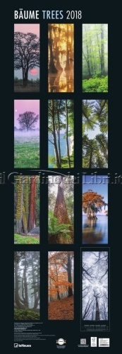 Calendario Bäume Trees 2018 - Grande Formato - Retro