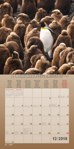 Calendario Pinguini Penguins 2018
