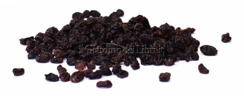 Ribes Essiccati Bio