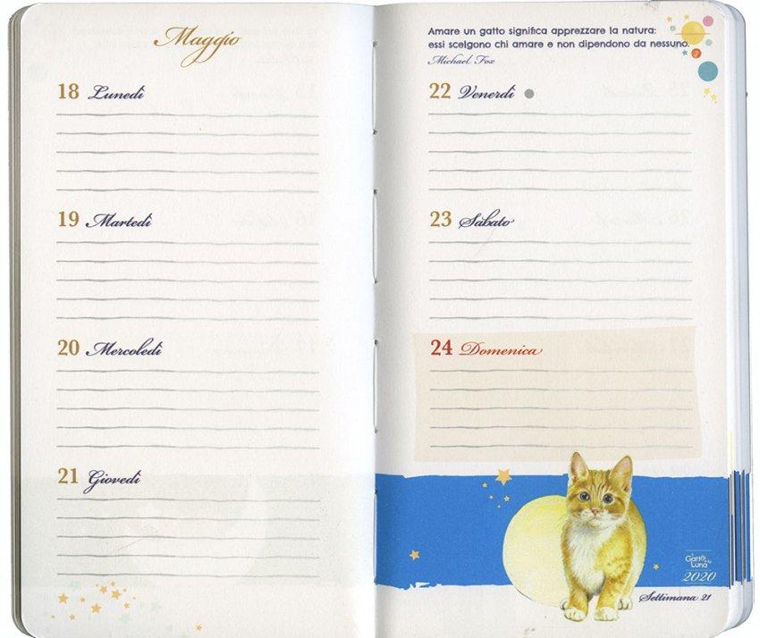 Agenda 2020 - Il Gatto e la Luna - Interno