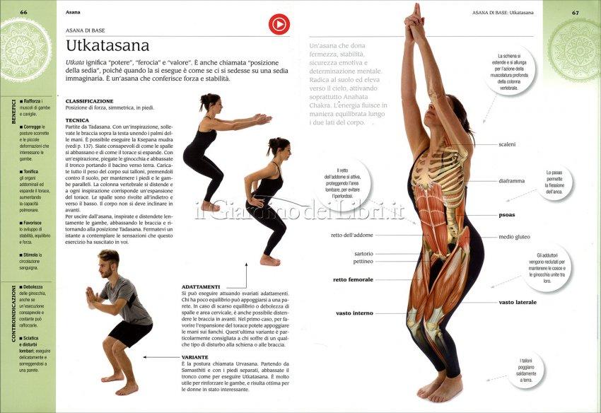 Anatomia e Yoga - Interno libro