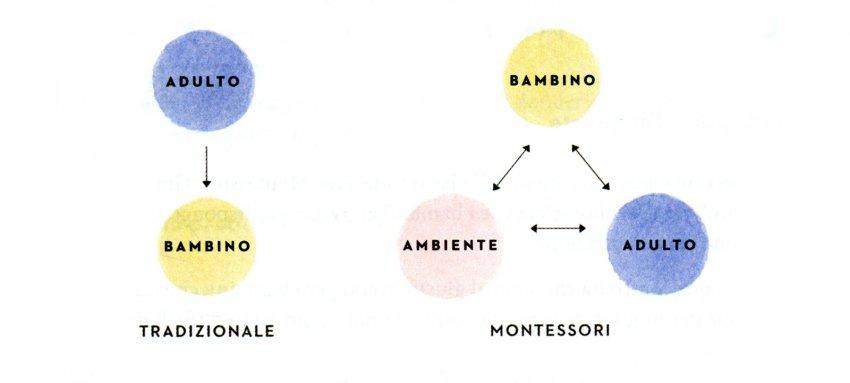 Il Bambino Piccolo Montessori - metodo tradizionale vs. metodo Montessori