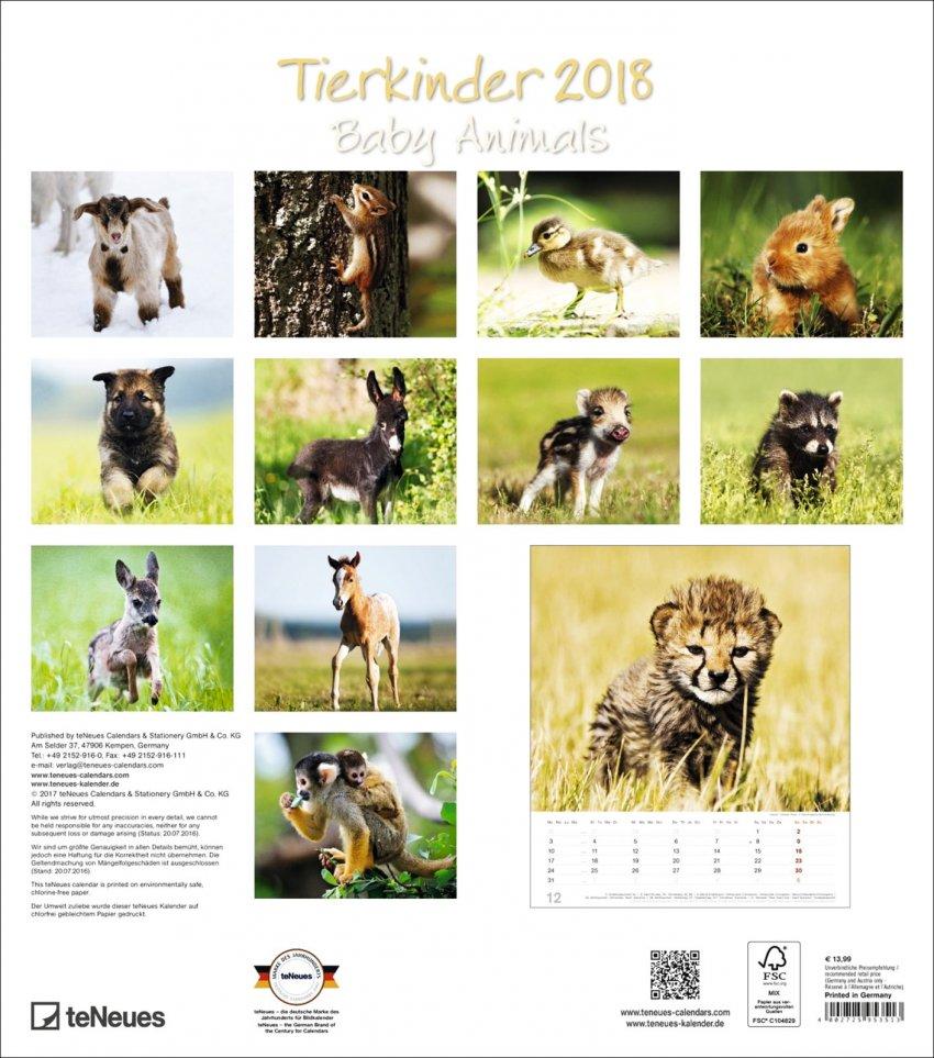 Calendario Baby Animals 2018
