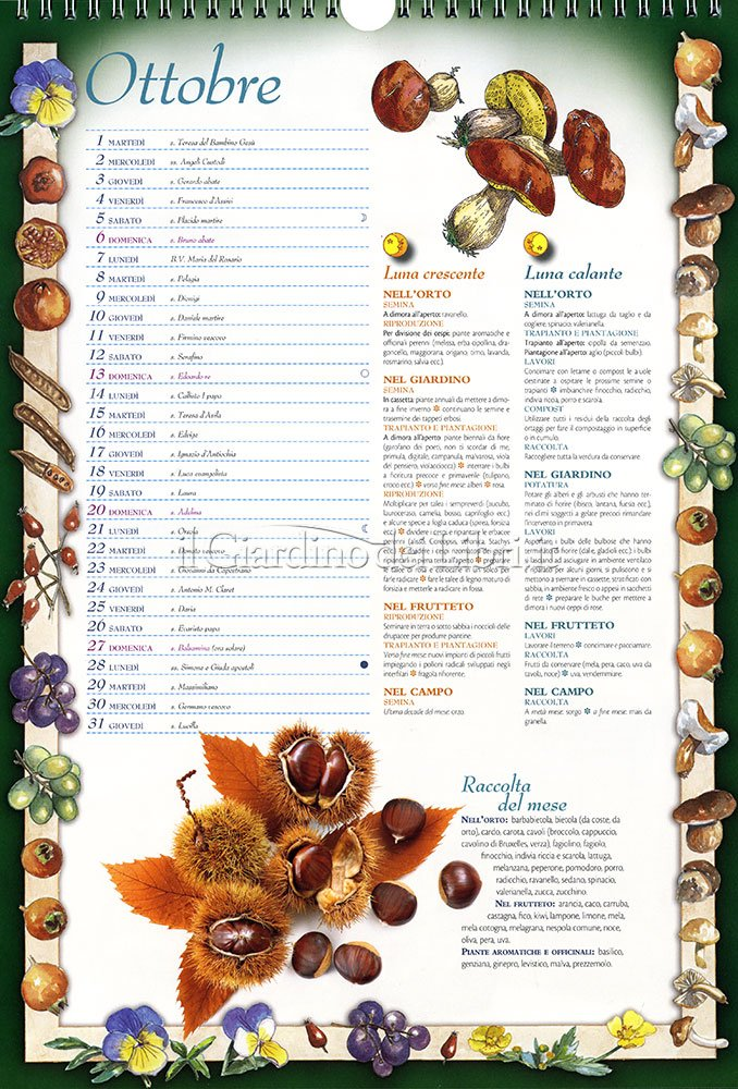 Calendario Lunare Orto.Calendario Lunare Per Orto 2019 Ikbenalles