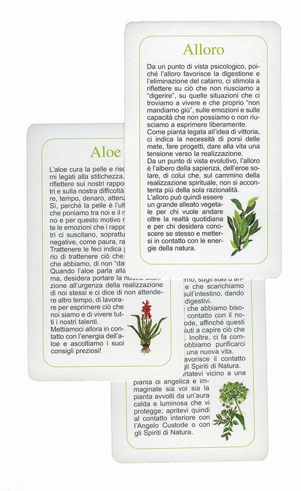Le Carte delle Erbe - Maria Fiorella Coccolo