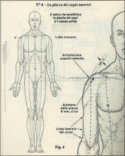 Le Catene Lineari del Corpo e dello Spirito - Tavola