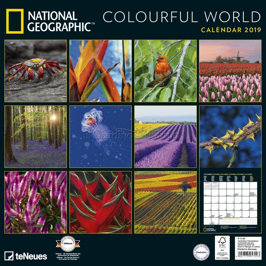 Calendario 2019 - Colourful World - Retro