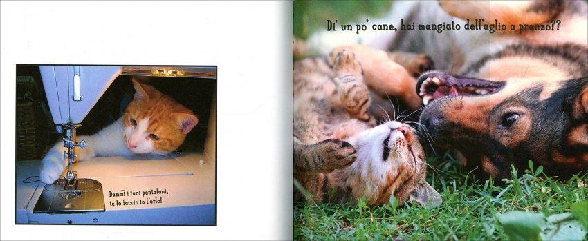 Cose da Gatti - Pagine Interne
