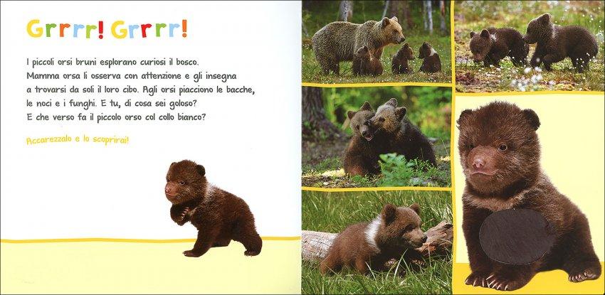 I Miei Cuccioli da Coccolare - orsetto