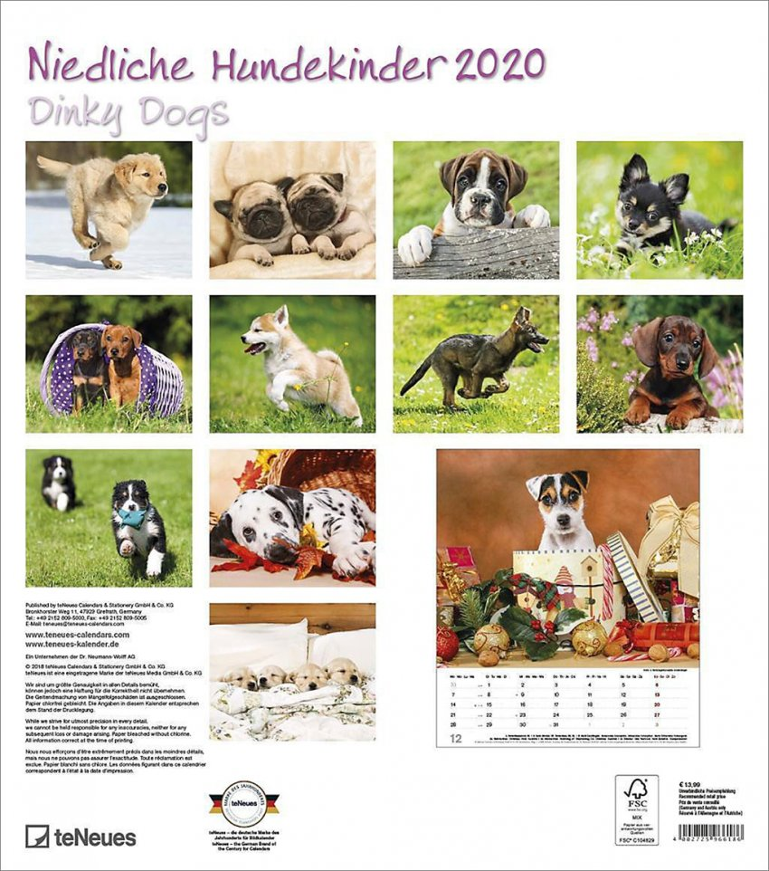 Calendario Dinky Dogs 2020 - Retro