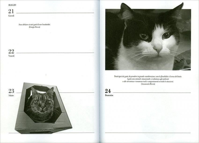 I Giorni dei Gatti - Agenda 2020 - Interno