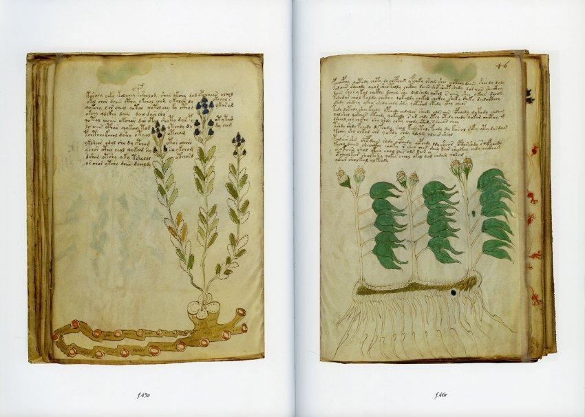 Il Manoscritto Voynich - Libro