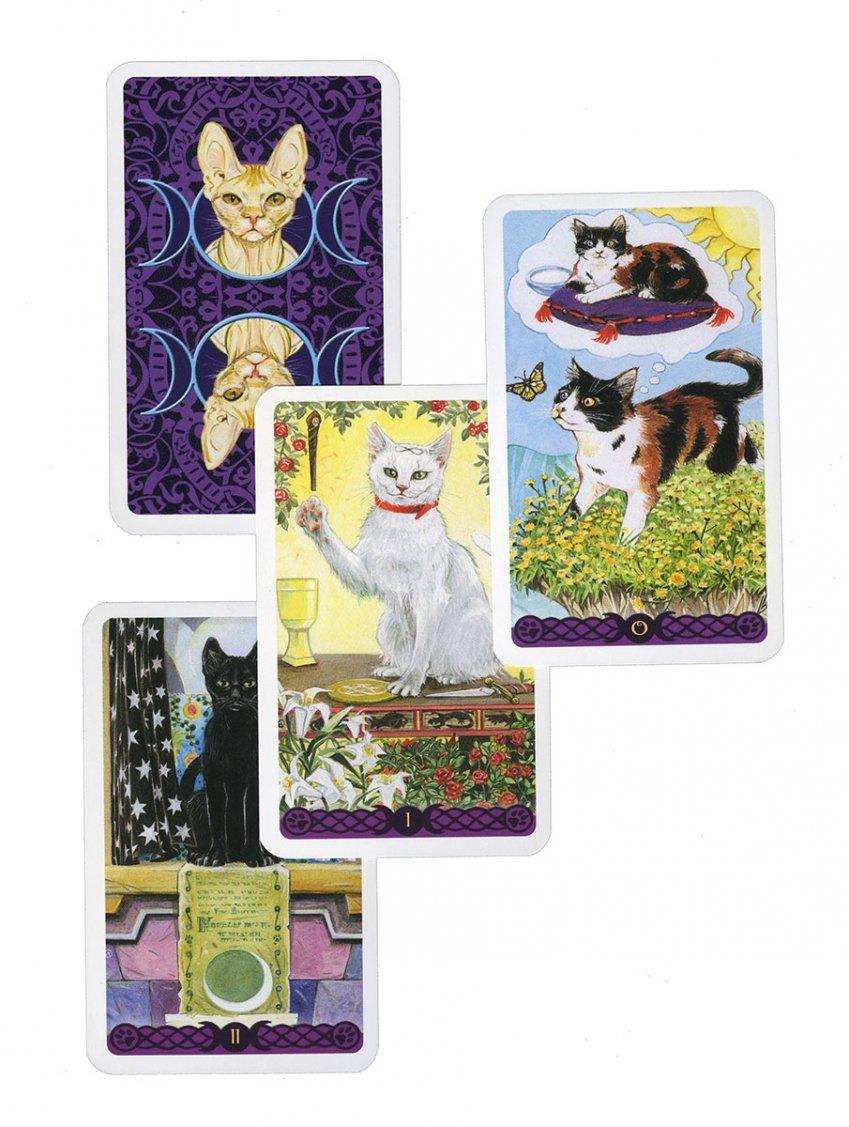 Tarocchi dei Gatti Pagani - Mini Tarocchi - Carte