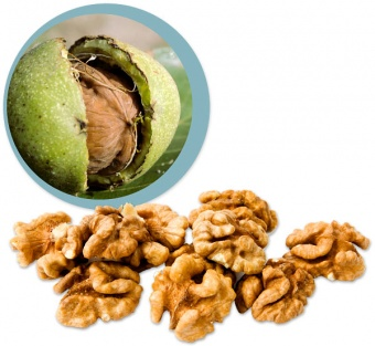 Frutta Secca - Noci Bio