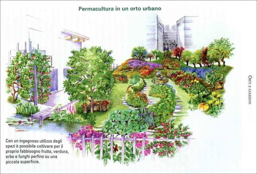 La Permacultura secondo Sepp Holzer - Orto urbano