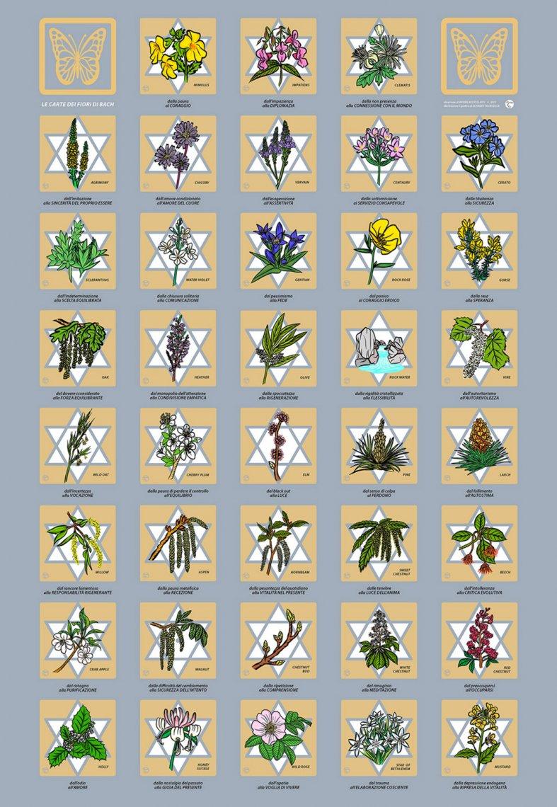 poster fiori di bach