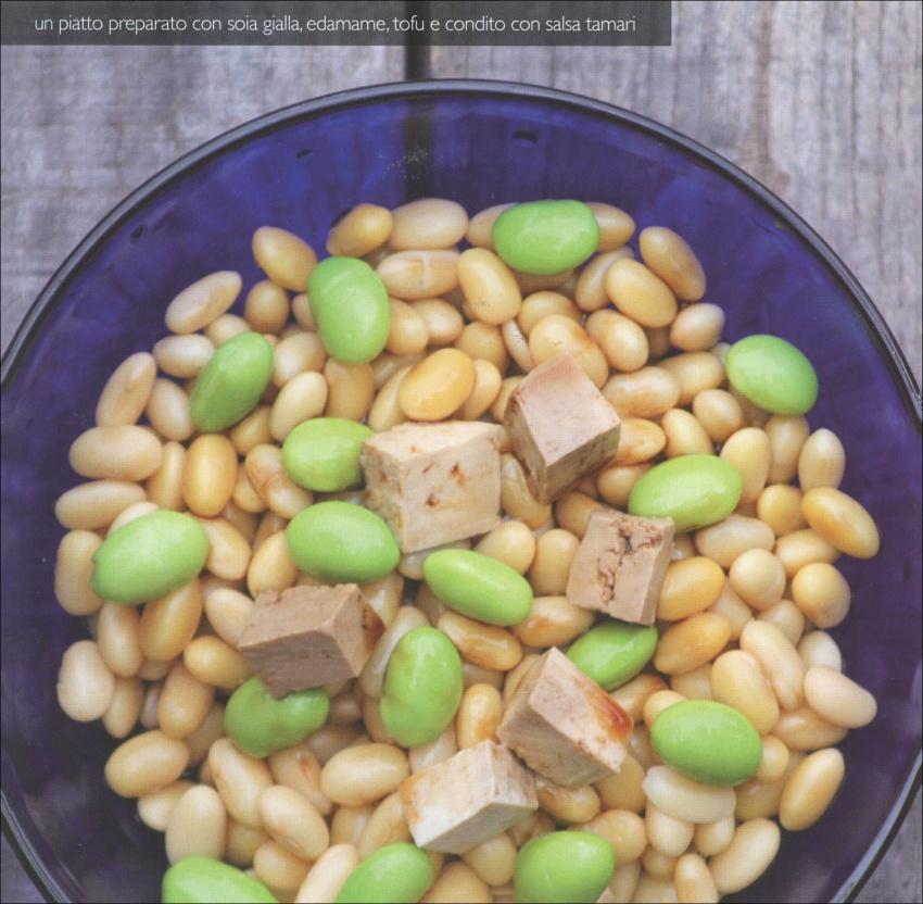 Tofu - Appetitose Ricette