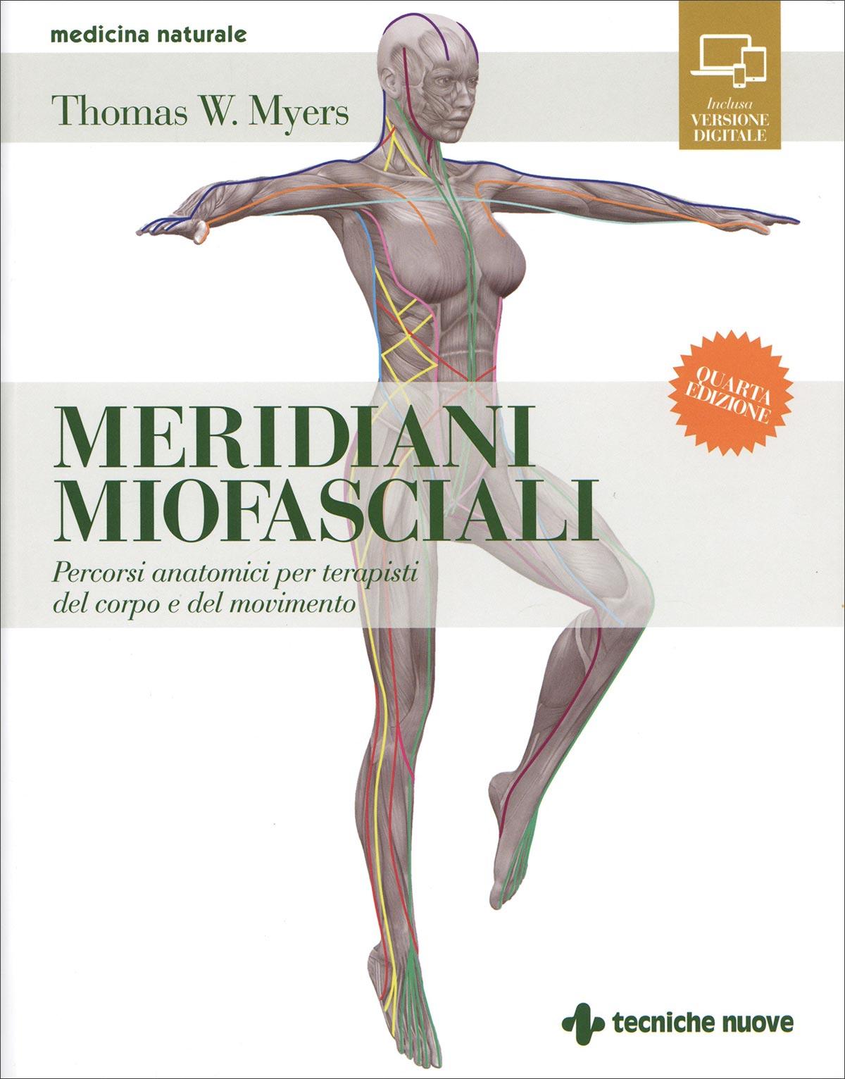 Increíble Anatomía Tom Myers Imagen - Anatomía de Las Imágenesdel ...
