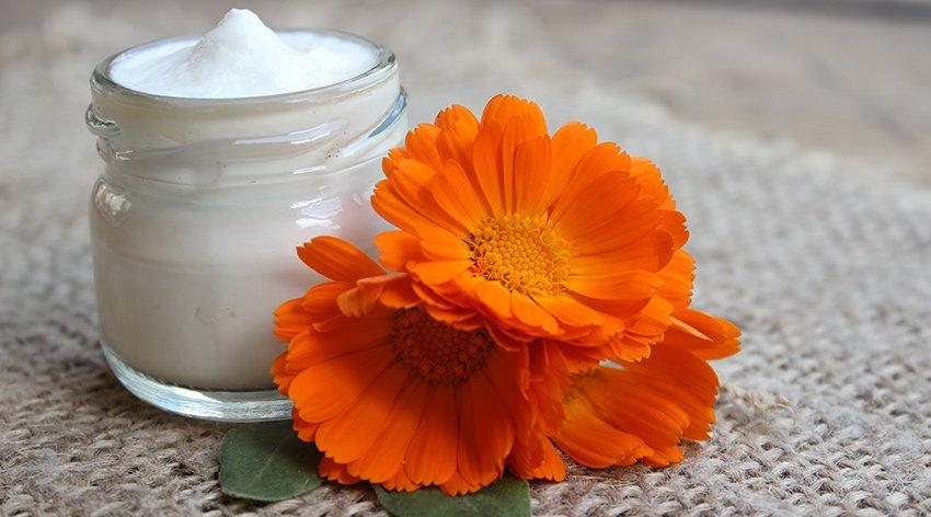 La calendula e i suoi benefici sulla pelle