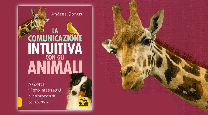 Come comunicare con gli animali