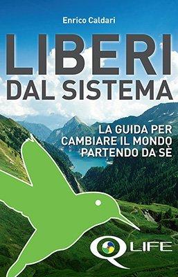 Liberi dal Sistema - Premessa - Enrico Caldari