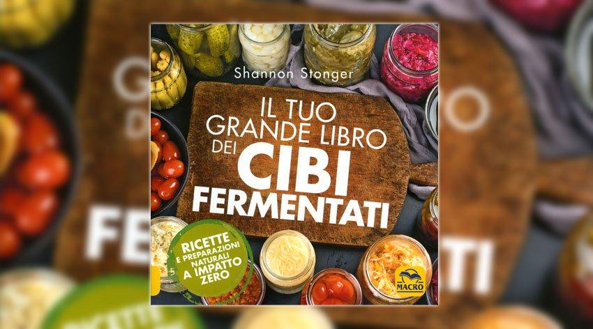 Alimenti e cibi fermentati