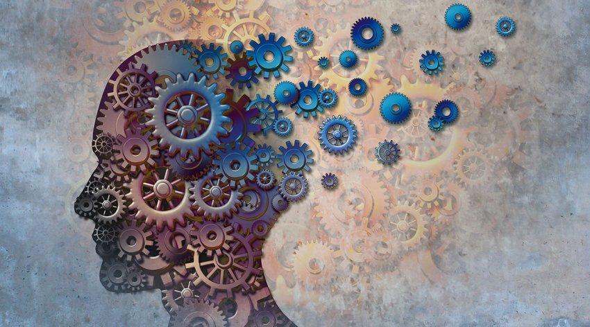 come-funziona-cervello-memoria