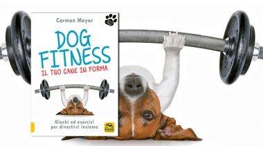 Scopri come far Eseguire nel Giusto Modo Esercizi Fisici al Vostro Cane