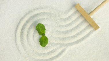 Il Giardino Zen - una fusione tra giardinaggio, religione e filosofia