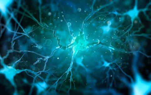 Cos'è la Neurochimica Cerebrale