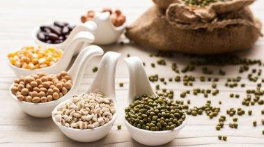 Le proteine vegetali: istruzioni per l'uso