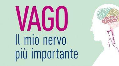 Il nervo vago e il sistema nervoso autonomo