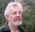 Stephen Levine - Foto autore